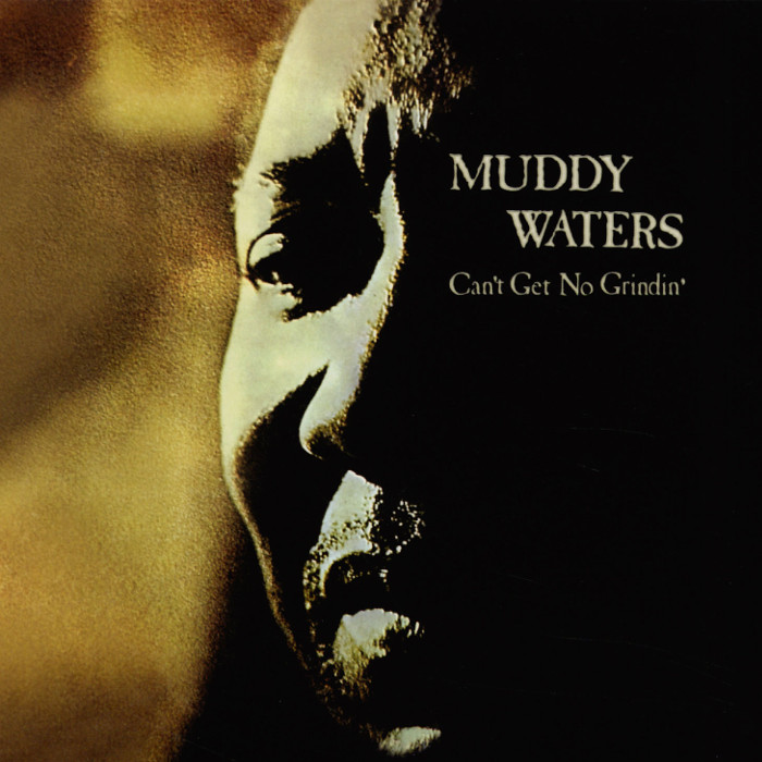 muddy waters - Can