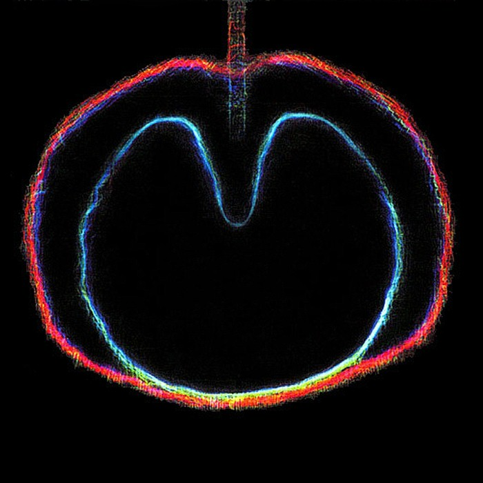 XTC - Apple Venus, Volume 2: Wasp Star